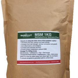 MSM 1kg – Nutritional Supplement