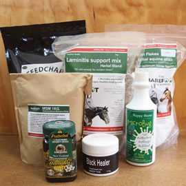 Supplements and Treatments